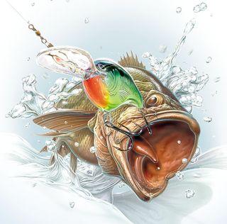 Bass caught